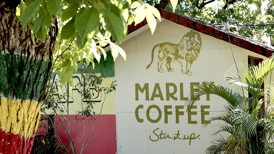 Marley Coffee Hopes to Stir Up the Specialty Coffee Market