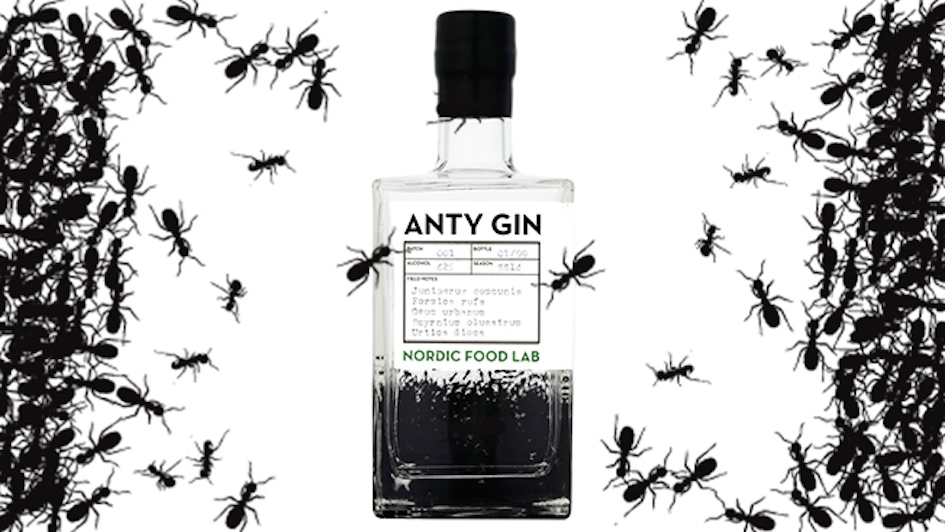 The Cambridge Distillery Makes A Bottle of Gin With 62 Red Wood Ants